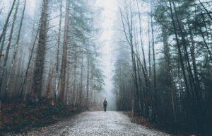 samotny mężczyzna z plecakiem idzie leśną ścieżką