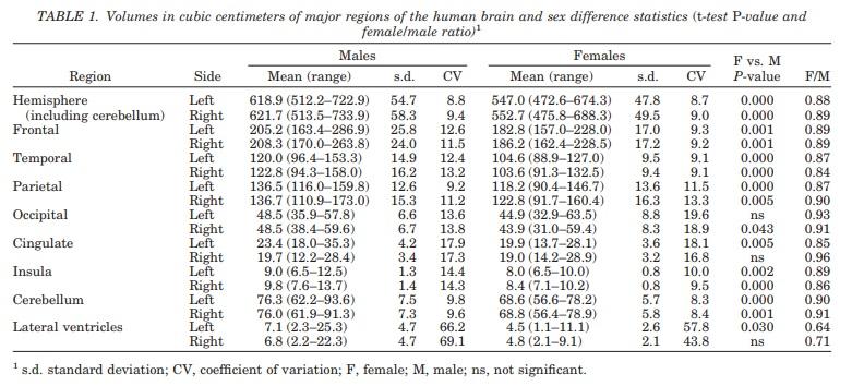 Ile waży ludzki mózg - Czy kobiety mają mniejsze mózgi niż mężczyźni? - Statystyki wielkości ludzkich mózgów