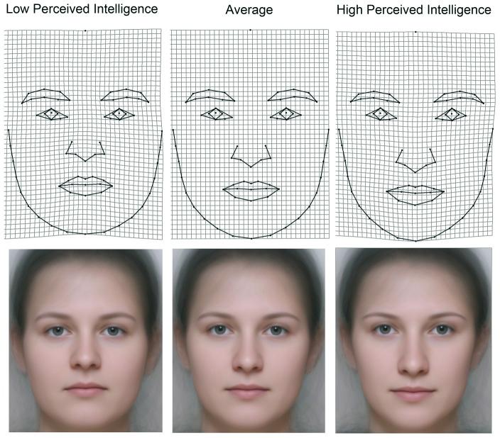 Postrzegany poziom inteligencji a rysy twarzy - kobiety