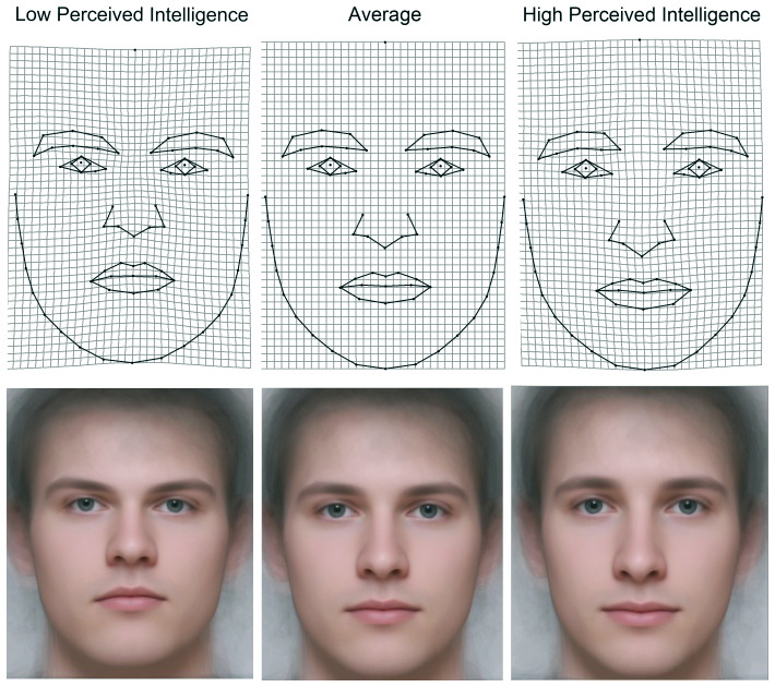 Postrzegany poziom inteligencji a rysy twarzy - mężczyźni