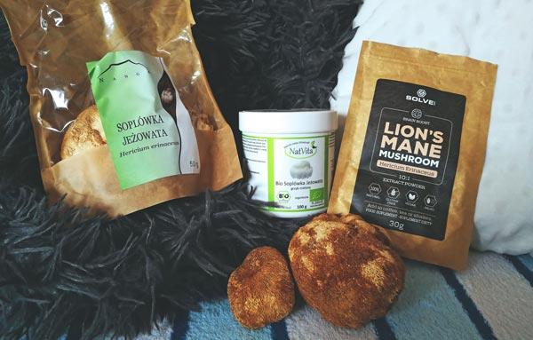 Lion's Mane - Suplementy z soplówką jeżowatą - gdzie kupić?