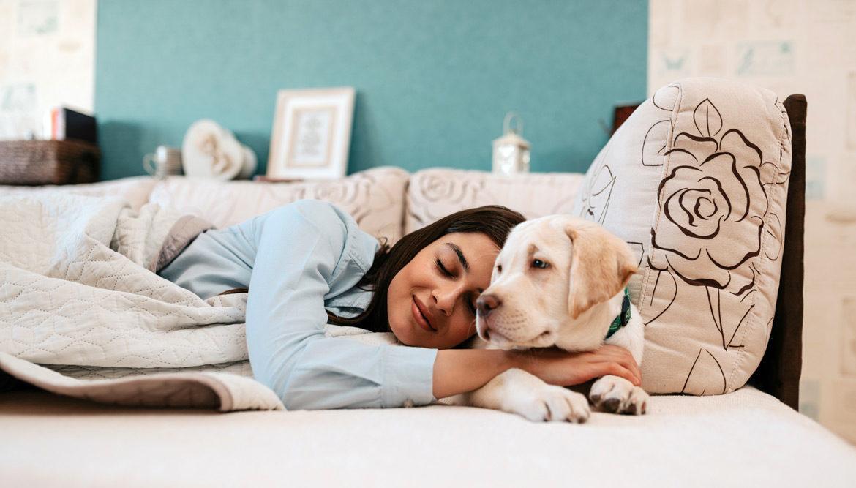 Człowiek śpiący z psem - Działanie oleamidu na sen i układ nerwowy