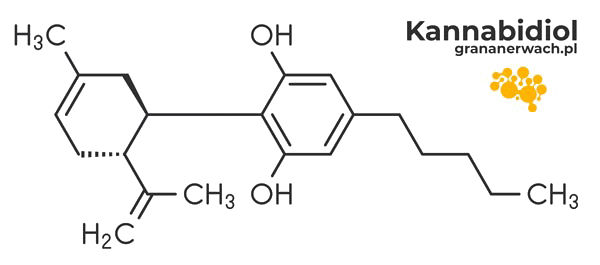 struktura chemiczna kannabidiolu (CBD)