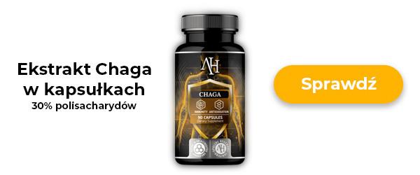apollos hegemony chaga 60 kaps - ekstrakt grzyba czaga w kapsułkach