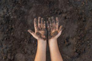 bakterie glebowe jako szczepionka na stres
