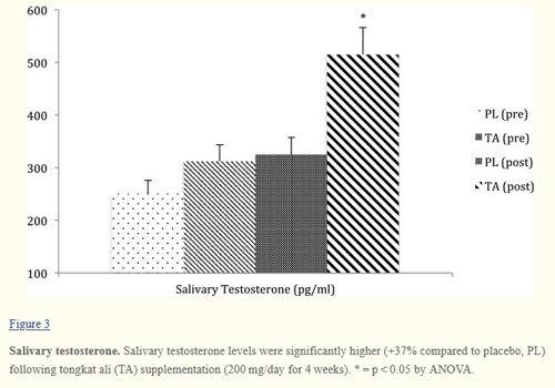 Wpływ Tongkat ali na stężenie testosteronu w ślinie